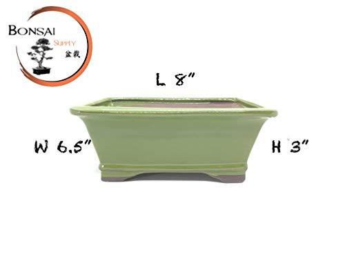Ceramic Bonsai Tree Pot Glazed 8