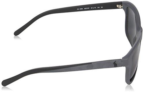 Grey Sonnenbrille Polo PH4095 Grey Gris Matte xaHAwXq