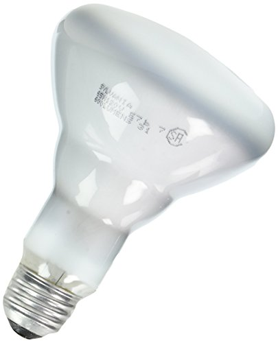 Sylvania Lighting BR30 65w 120-volt Indoor Flood Bulb, 6-Pack (Light Bulb 65w)