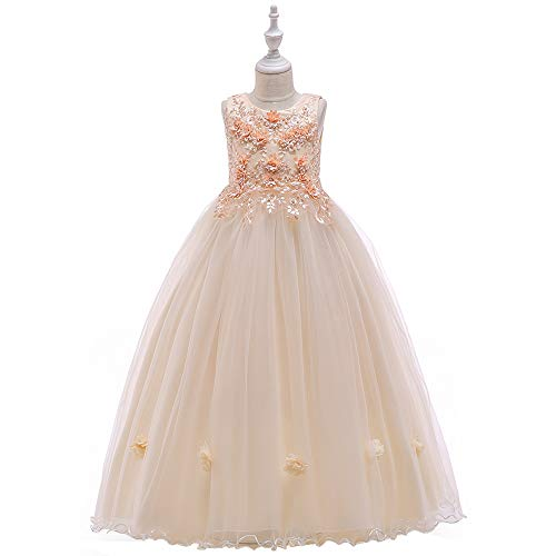 NOMSOCR Kids Lace Flower Costume Dress Girl Pageant Christmas Party Princess Dresses (2-3 Years, Champagne)