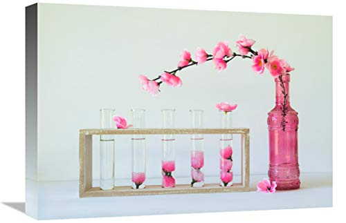 Global Gallery Jacqueline Hammer 'Petal Collecting' Stretched Canvas Artwork, 22 x 15.62 ()