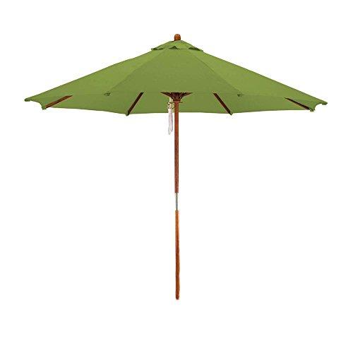 Phat Tommy Deluxe Market Umbrella in Kiwi