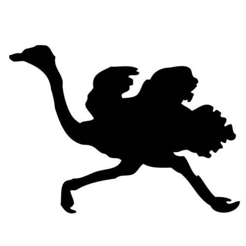 OSTRICH RUNNING FAST SILHOUETTE DECAL CAR STICKER, White, 22 In, Die Cut Vinyl Decal, For Windows, Cars, Trucks, Toolbox, Laptops, Macbook-virtually Any Hard Smooth Surface by ELKS Unique Design