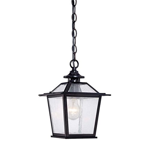 Acclaim 9706BK Salem Collection 1-Light Outdoor Light Fixture Hanging Lantern, Matte Black by Acclaim