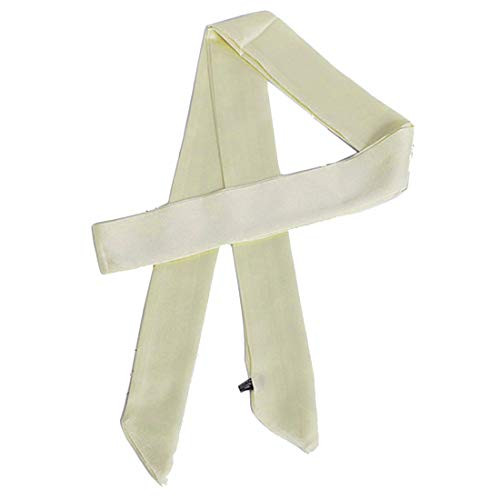 Ribbon Scarf for Women Handbag Wrap Handle Satin Belt Sash Necktie Neck Scarf PSSD01 (Ivory)