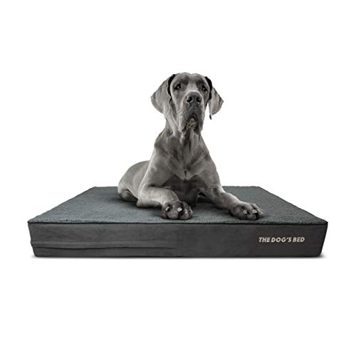 The Dog's Bed Orthopedic Dog Bed XXL Grey Plush 54x36, Premium Memory Foam, Pain Relief for Arthritis, Hip & Elbow Dysplasia, Post Surgery, Lameness, Supportive, Calming, Waterproof Washable Cover