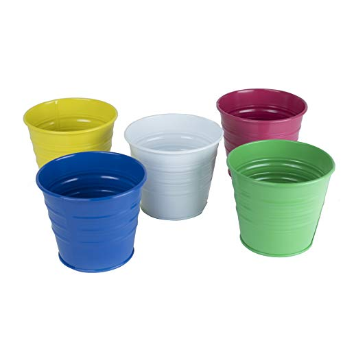 Metal Basket Bucket Planters Pot Assorted Colors Set of 5 for Plant and Flower -