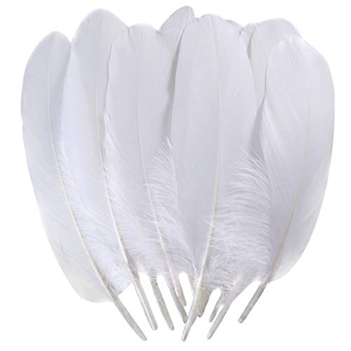 TommoT 100pcs 6-8 Inch Large Feathers for Crafts