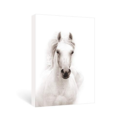 SUMGAR Black and White Wall Art for Living Room Contemporary Animals Pictures of Horse Paintings on Canvas Ready to Hang, 16x24inch