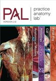 Practice Anatomy Lab Instructor Resource DVD by Pearson