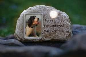 "Memorial Stone - Forever Remembered w/Solar Light & Photo Slot (9.5"")"