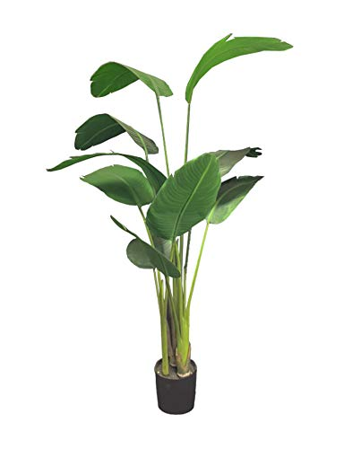 Topiary Bird (AMERIQUE Unique and Gorgeous 5' Bird of Paradise Artificial Tree Plant Real Touch Technology, with Nursery Plastic Pot, UV Protection, for Both Indoor and Outdoor, 5 feet, Green)