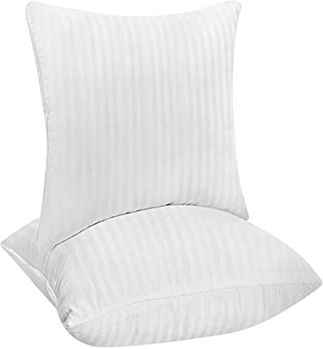 Cotton Square Pillow 18 x 18 inch Decorative Pillow Insert b