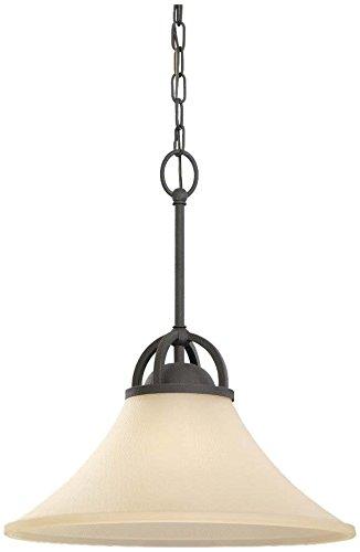 375-839 Somerton One-Light Pendant with Cafe Tint Glass Shade, Blacksmith Finish (Somerton Pendant Light)