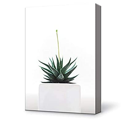 Classic Artwork, Delightful Expert Craftsmanship, House Plant Bright Painting Wall Poster Decor for Living Room Framed