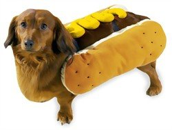 Best Dog Owner Costumes (Casual Canine Hot Diggity Dog with Mustard Costume for Dogs, 14