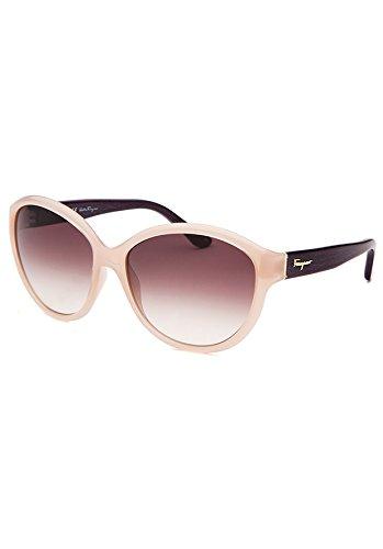 2a33f767dc0 Amazon.com  Ferragamo Women s Sunglasses