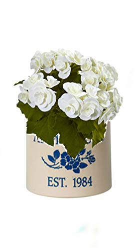 (Personalized Rose Stem 2 Gallon Stoneware Crock (Blue Crock with White Flower))