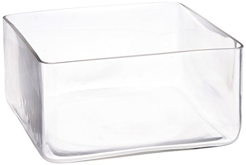 Square 8 Vase (WGV Clear Square Block Glass Vase, 8 by 4-Inch)