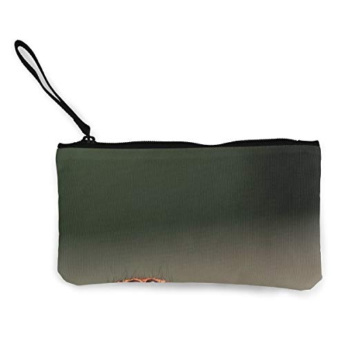 Oomato Canvas Coin Purse Spider Paw Eye Cosmetic Makeup Storage Wallet Clutch Purse Pencil Bag ()
