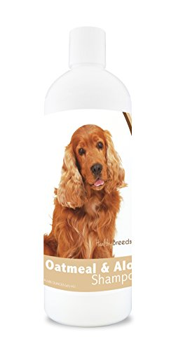 Healthy Breeds Dog Oatmeal Shampoo with Aloe for Cocker Spaniel - Over 75 Breeds - 16 oz - Mild and Gentle for Itchy, Scaling, Sensitive Skin - Hypoallergenic Formula and pH Balanced (Best Food For Cocker Spaniel Dogs)
