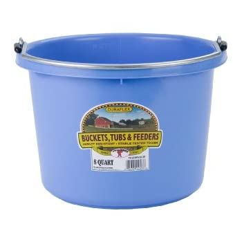 Miller Manufacturing P8BERRYBLUE Plastic Round Back Bucket for Horses, 8-Quart