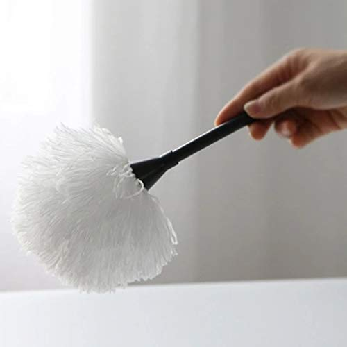 ZHANGY Cleaning Tools Small Scorpion, No lint Dust Scorpion Chemical Fiber Cotton Cleaning The Donkey Cleanable 9in by ZHANGY (Image #1)