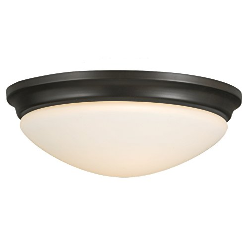 Feiss FM272ORB-LED 2-Light Indoor Flush Mount Wall (14' Transitional Flush Mount)