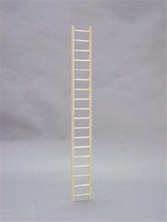 North American Pet BBO22794 Bob Parrot Ladder, 36-Inch 31ZqYbTq2BuL