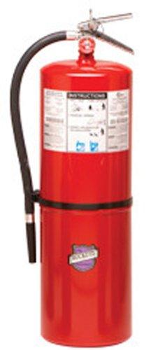 Buckeye 12621 Purple K Dry Chemical Hand Held Fire Exting...