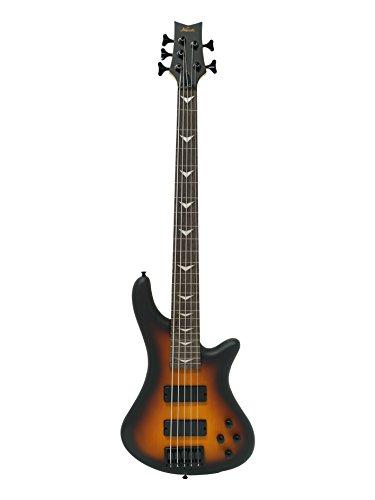 Fretless 5 String Electric Bass Bolt_On Maple Neck Sunburst