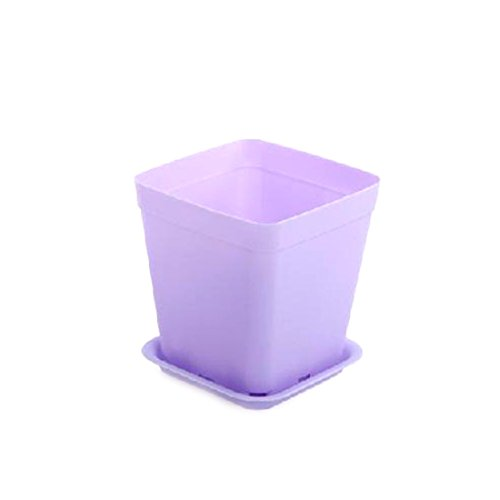6 Pcs Colorful Flower Pot Square Plastic Planter Nursery Garden Desk-Purple