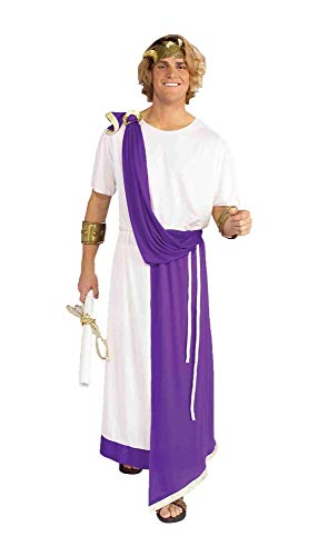 Forum Julius Caesar Roman Costume, White/Purple, One Size