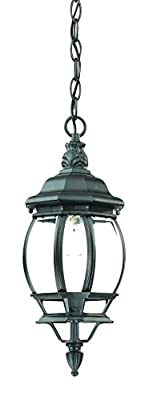Acclaim 5056BK Chateau Collection 1-Light Outdoor Light Fixture Hanging Lantern, Matte Black