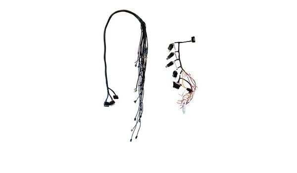 amazon com: cbm motorsports delphi mefi 4 wiring harness for ls series  engines: automotive