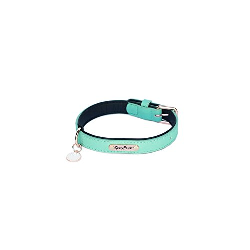 (ZippyPaws Leather Collar - Teal M)
