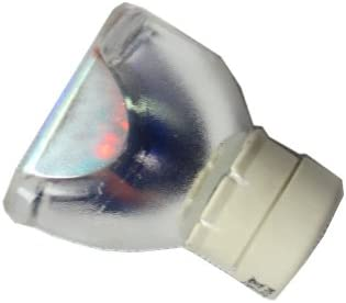 XpertMall Replacement Lamp Housing Dream Vision DREAMBEE Pro Original Bulb Inside