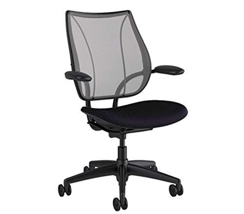 - Humanscale Liberty Office Desk Task Chair - L116BN02V102-B Pinstripe Silver Backrest - Vellum Graphite Seat