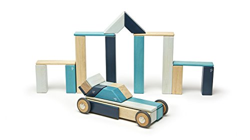 Tegu 42 Piece Magnetic Wooden Block Set, Blues