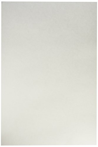 School Smart Tagboard - Heavy Weight - 12 x 18 inches - 100 Sheets - White