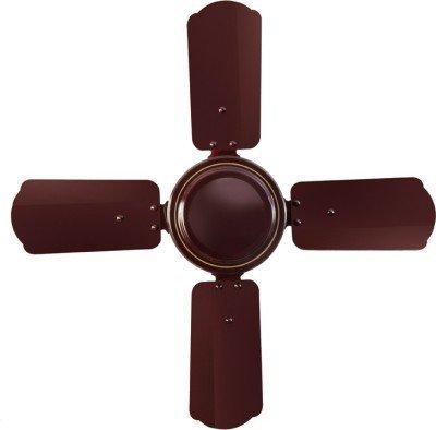 Sameer 24 Gati High Speed Ceiling Fan (Brown)