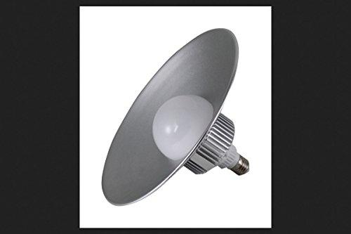 Light Bulb Utility (Keystone LED Lighting 2500 Lumen LED Utility Bulb with Hood, 30W)