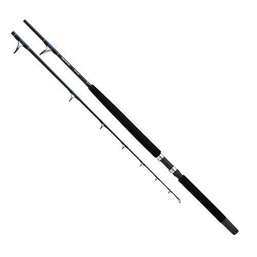 Daiwa SLN66XHR Sealine 40-80 lb Test Boat Rod, Black
