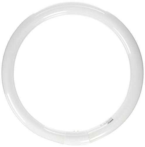 Satco S6503 4100K 32-Watt 4 Pin T9 Circline Lamp, Cool White (Satco Bulbs Circline)