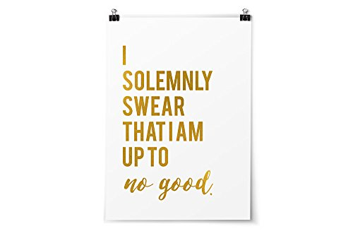 JDP Goods Harry Potter Quotes and Sayings Art Prints - I Solemnly Swear 5
