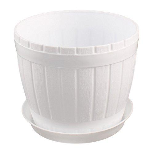 Amazon.com: eDealMax plástico Casa Jardín Cilindro Flor Hierba Planta Titular de establecimiento Vegetal Bote Blanco: Home & Kitchen