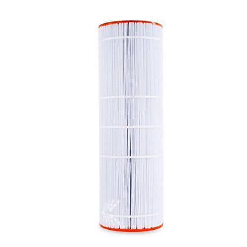 Unicel C-9419 Replacement Filter Cartridge for 200 Square Foot Predator, Clean and Clear