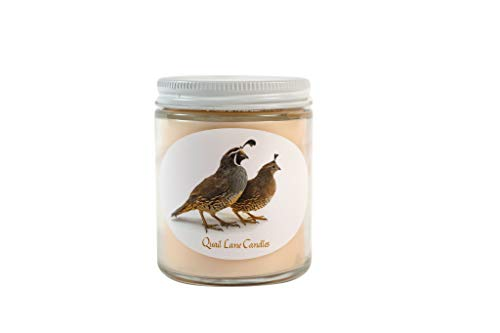 Quail Lane Candles - Apple Harvest - Cinnamon Infused Soy Wax Scented Candle - Long Lasting - Highly Fragrant - Clear Straight-Sided 6 oz Jar with Self-Trimming Cotton Wick - Hand Made in USA