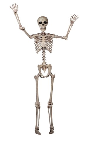 Crazy Bonez Pose-N-Stay Skeleton (Skeletons Halloween)