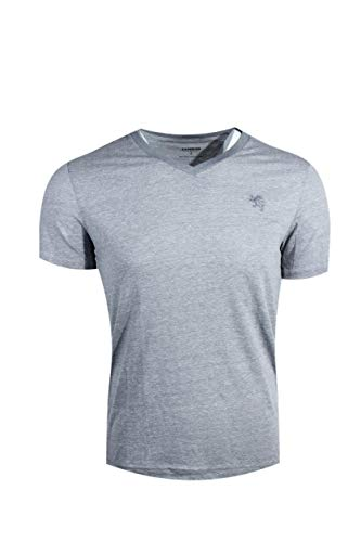 Express Men's Classic Fit V-Neck Small Lion T-Shirt (Large, Grey Heather (Grey Lion)) from Express